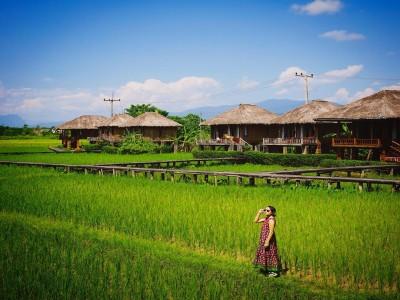 Nghỉ dưỡng ở Vieng Tara Villa giữa đồng ruộng độc nhất vô nhị