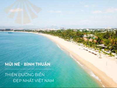 Bỏ túi kinh nghiệm du lịch Mũi Né Phan Thiết 3 ngày 2 đêm